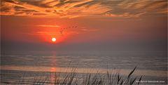 Sommer, Sonne, Strand und Meer ....