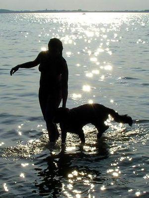 Sommerabend am Plauer See