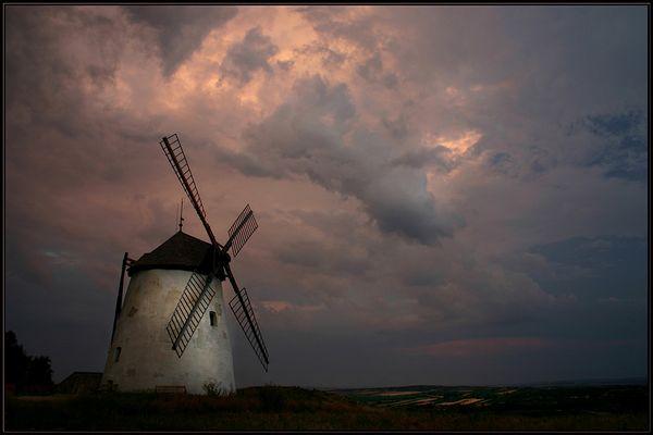 Sommerabend bei der alten Windmühle