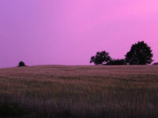 Sommerabend in Unterkotzau
