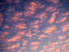 sommerendehimmel in rosablau