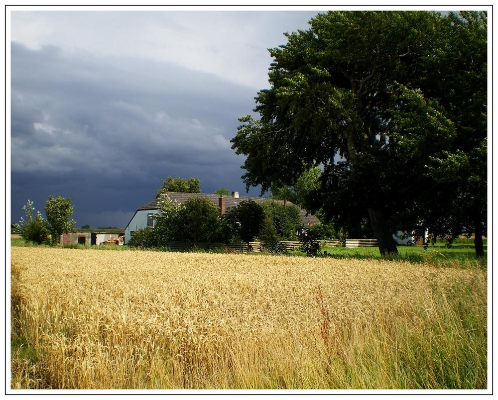 Sommerhimmel 2009 in Westermarsch in Ostfriesland