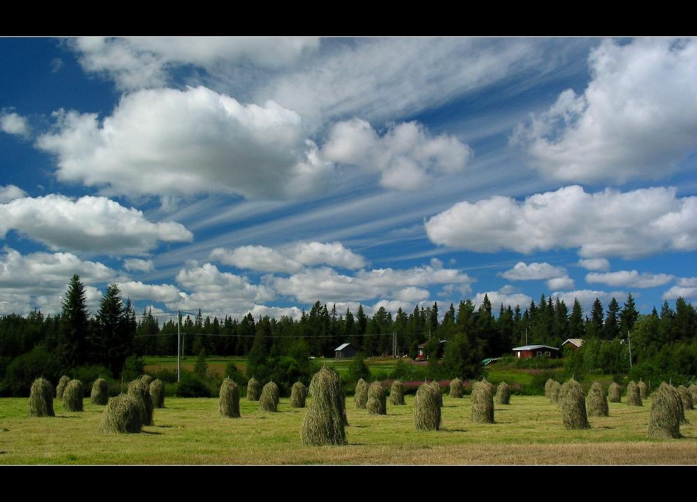 Sommer_in_der_Region_Kuusamo