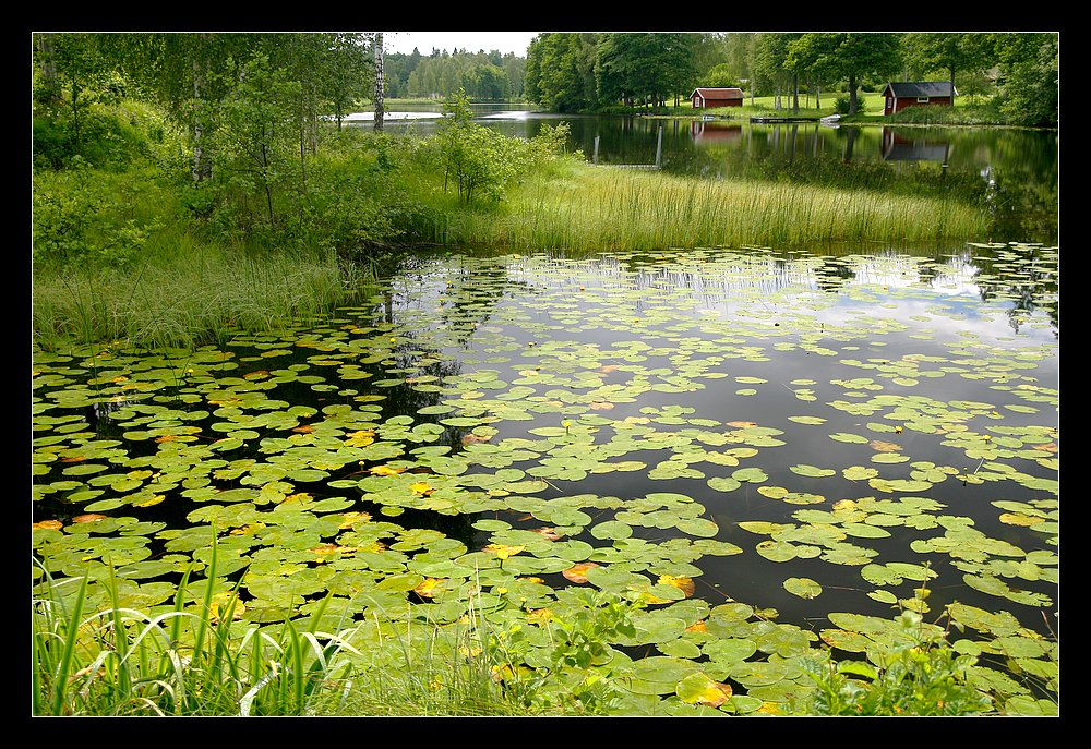 Sommer_in_Västergötland