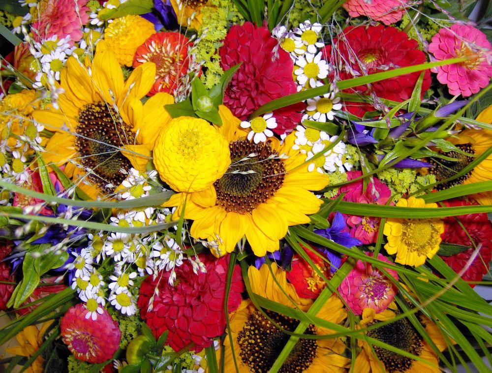 sommerlicher Blütenzauber