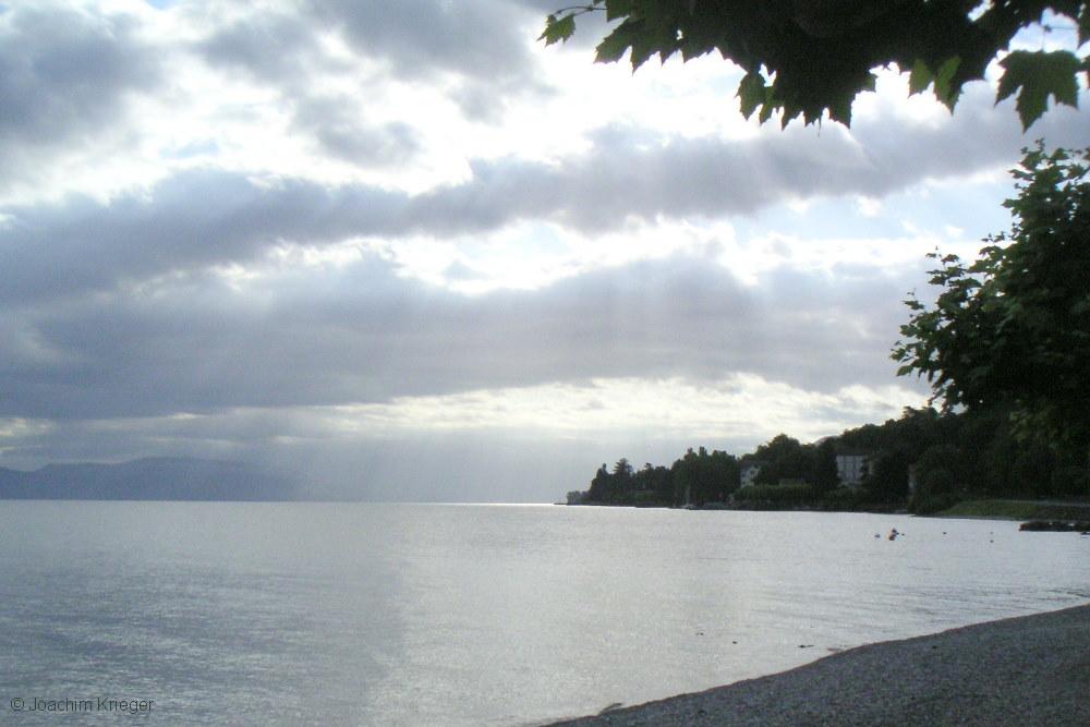 Sommerlicher Genfer See in der Frühe