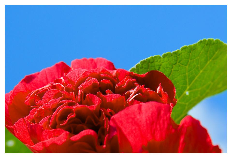 Sommerliches Rot Grün Blau