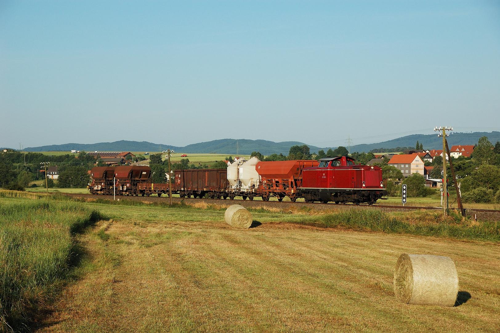 Sommermorgen im Burgenwald