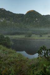 Sommermorgen im Leckermoor
