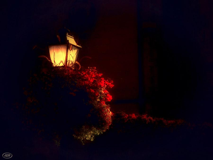 Sommernacht...