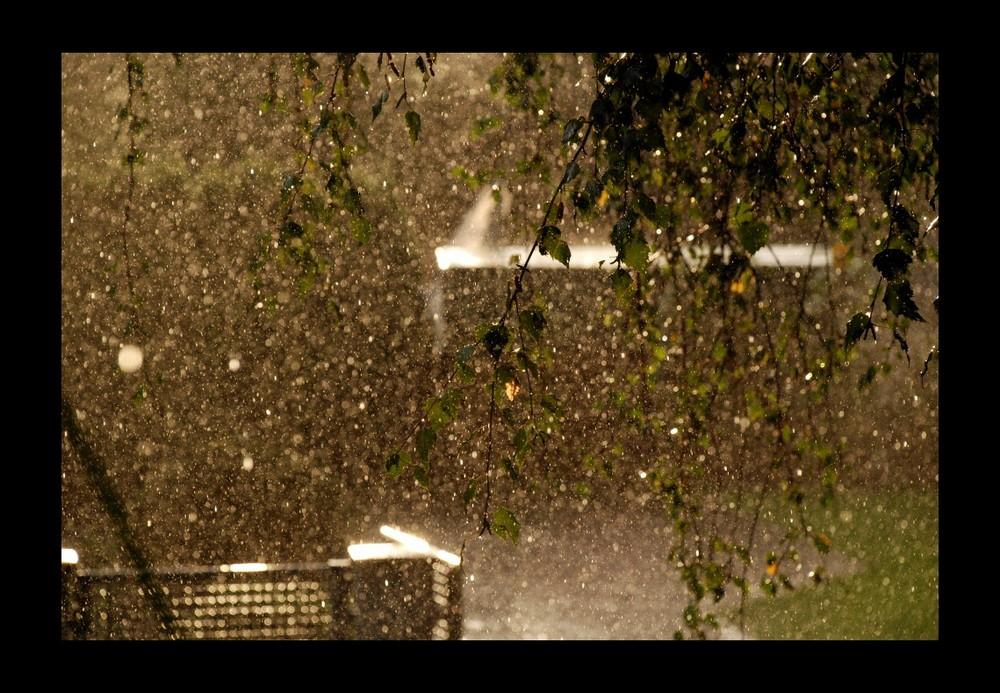 Sommerregen 4