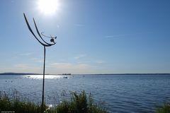Sommertag am Steinhuder Meer