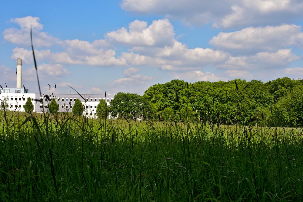 Sommertag im Ruhrgebiet