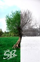 Sommer/Winter Collage