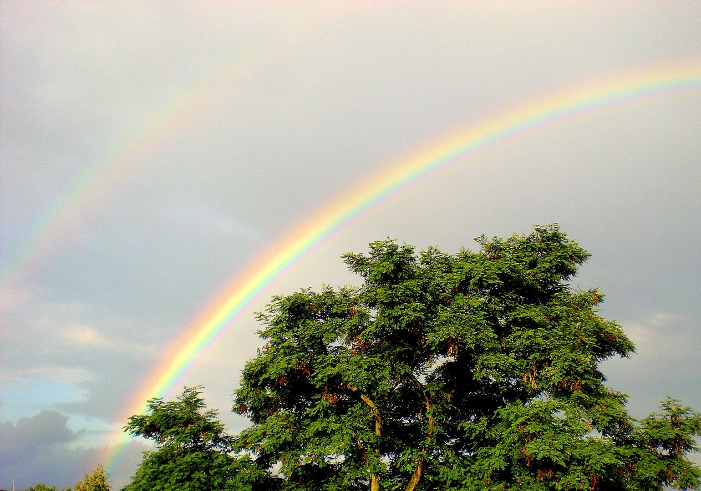 Somwhere over the rainbow....