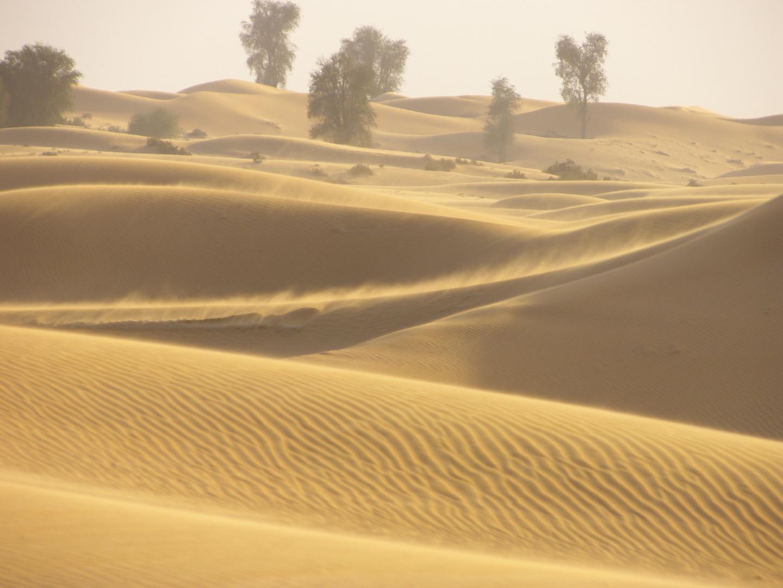 Song of the desert