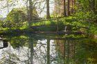 Sonnberg Teich