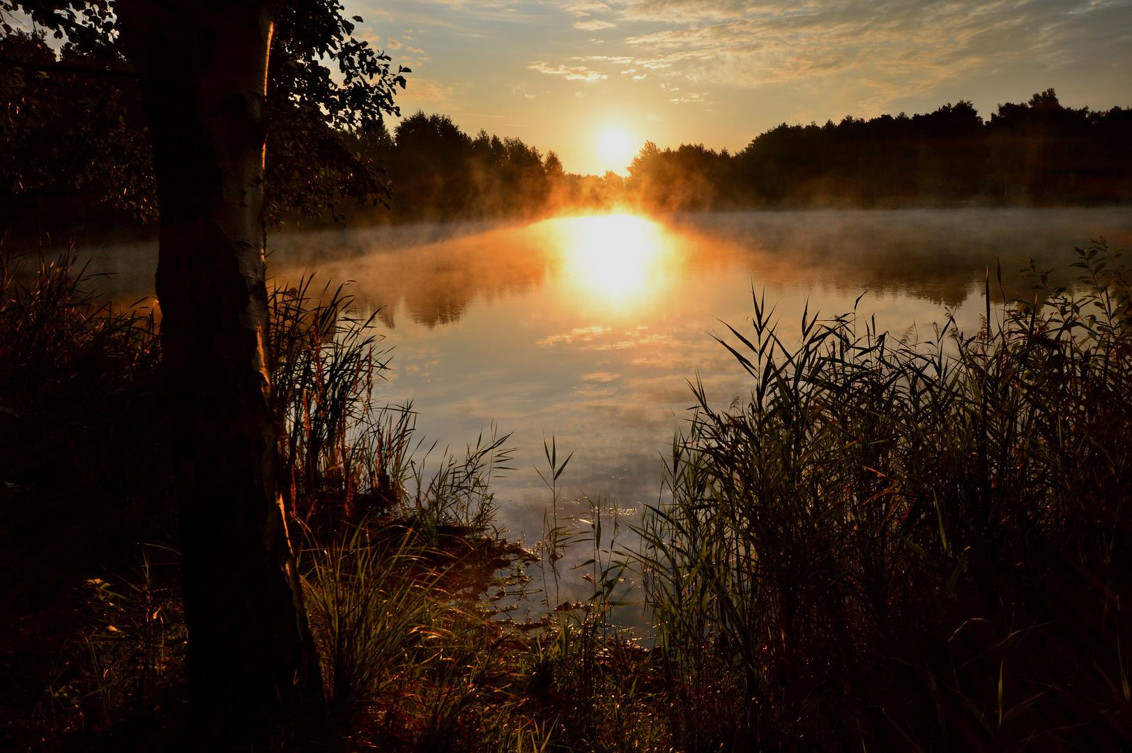 Sonne am frühen Morgen im September