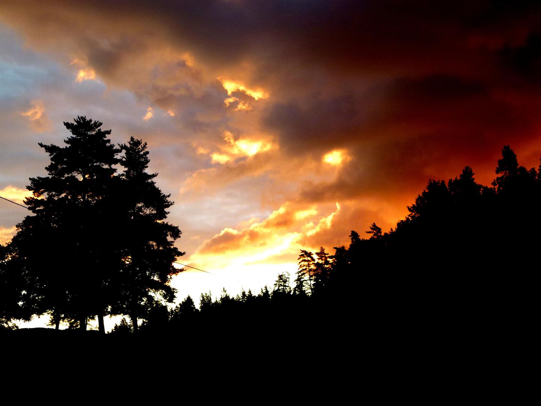 Sonne am Morgen vertreibt alle Sorgen....................
