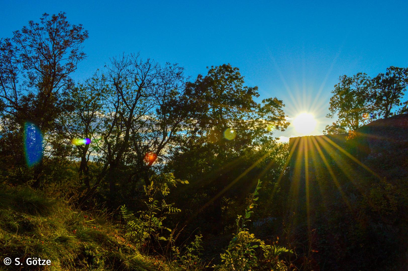 Sonne an der Ruine der Burg Falkenstein