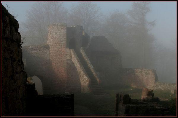 Sonne besiegt den Nebel