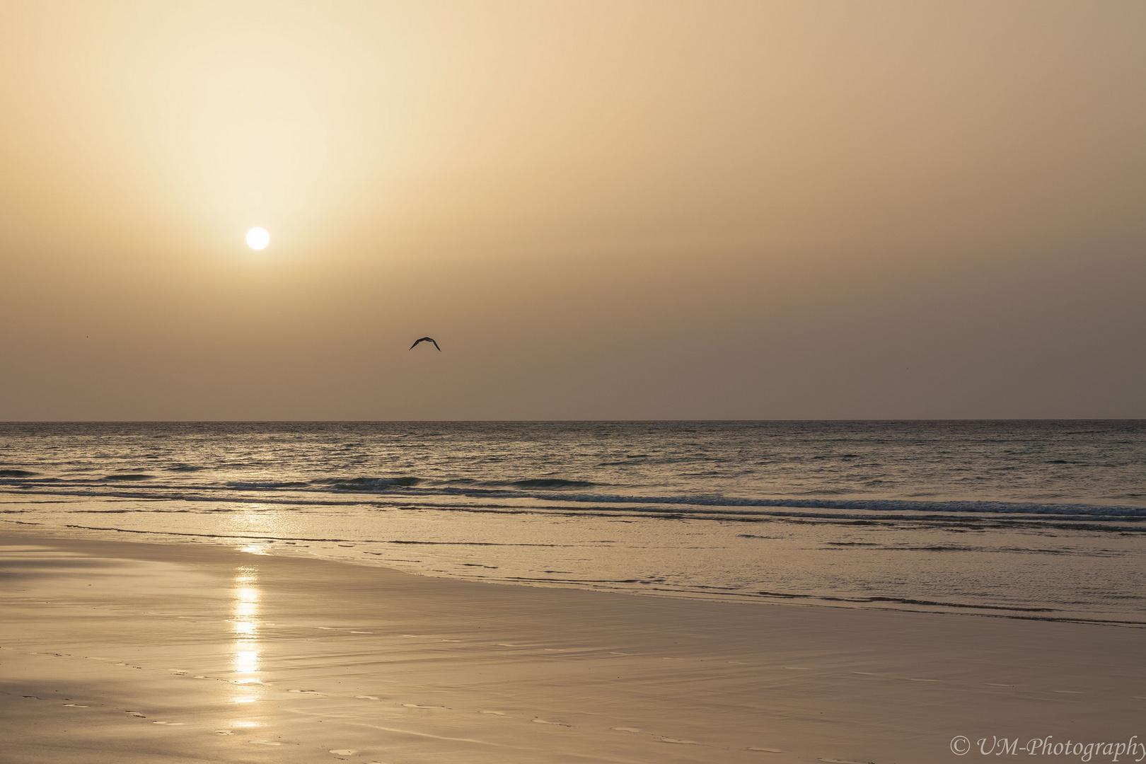 Sonne, Dunst und Meer