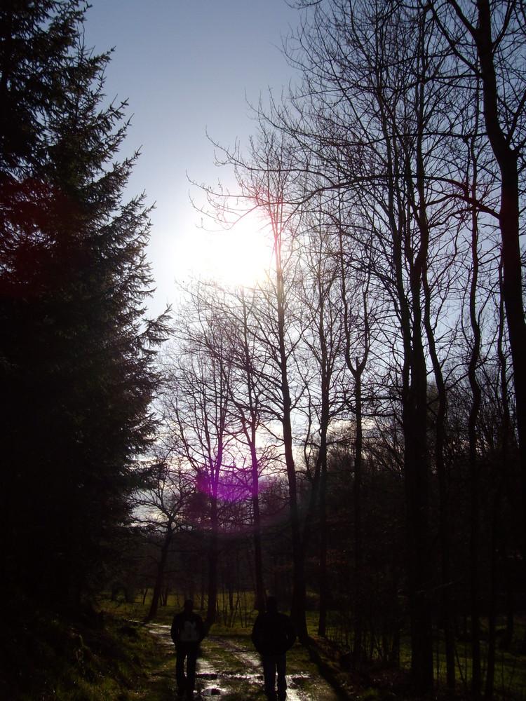 Sonne :-)