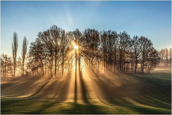 Sonne im Dezember