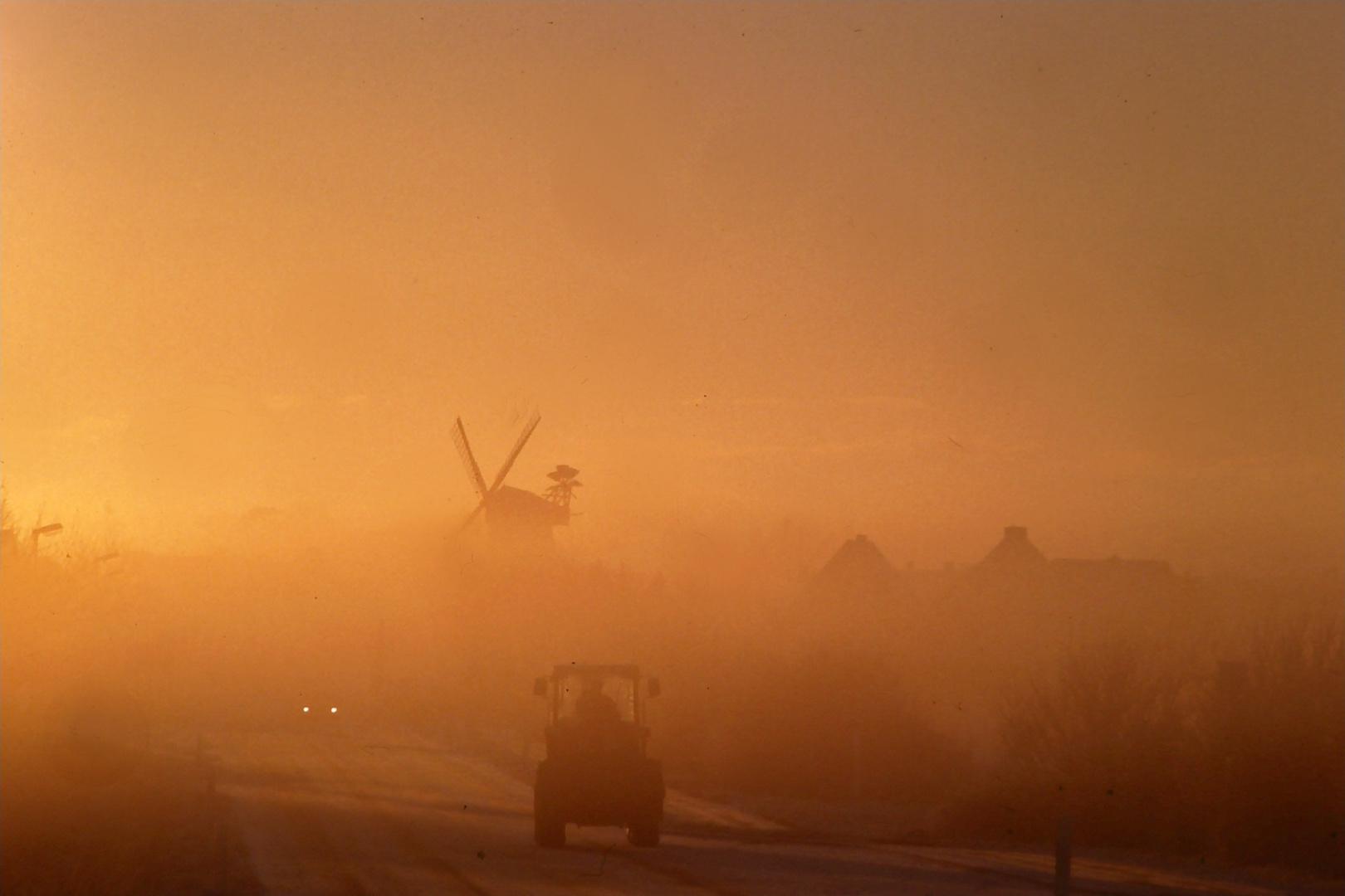 Sonne imNebel: Spätherbst in Föhr