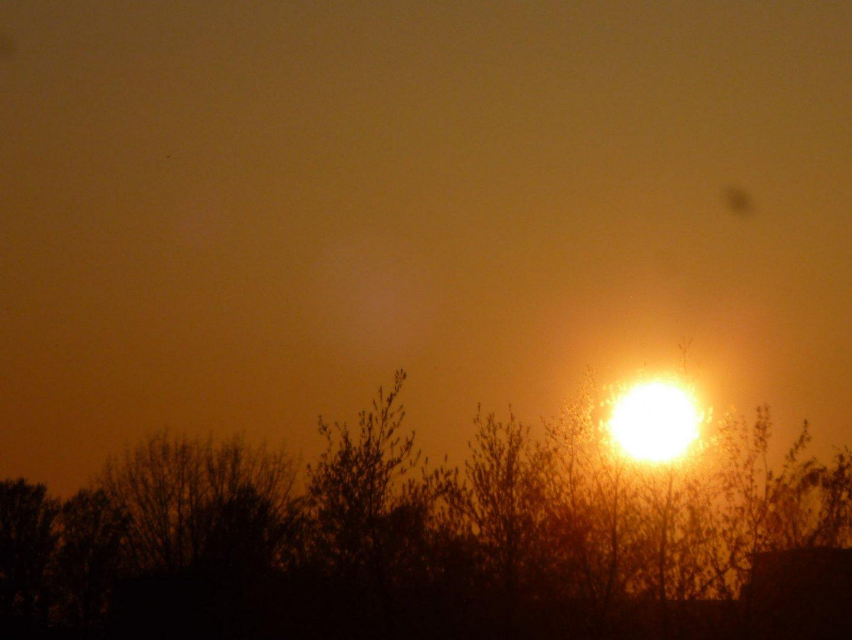 Sonne in Asche