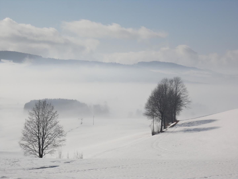 Sonne & Nebel