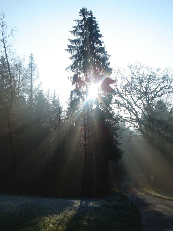 Sonne-Schatten-Spiel