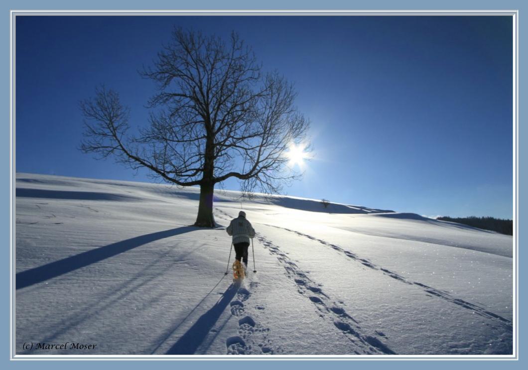 Sonne, Schnee und Fun