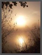Sonne spiegelt sich im See (bei Morgennebel)