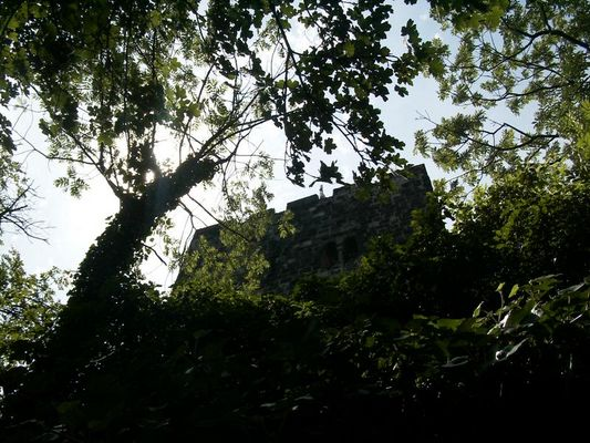 Sonne über dem Drachenfels