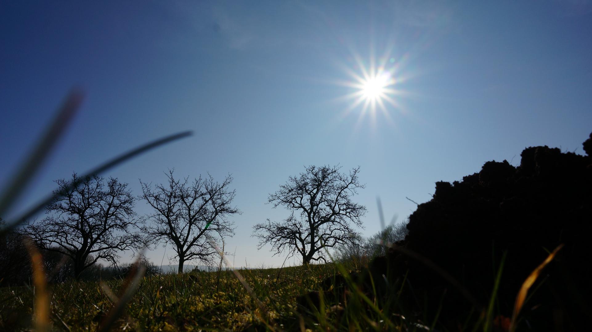 Sonne über Maulwurhügel