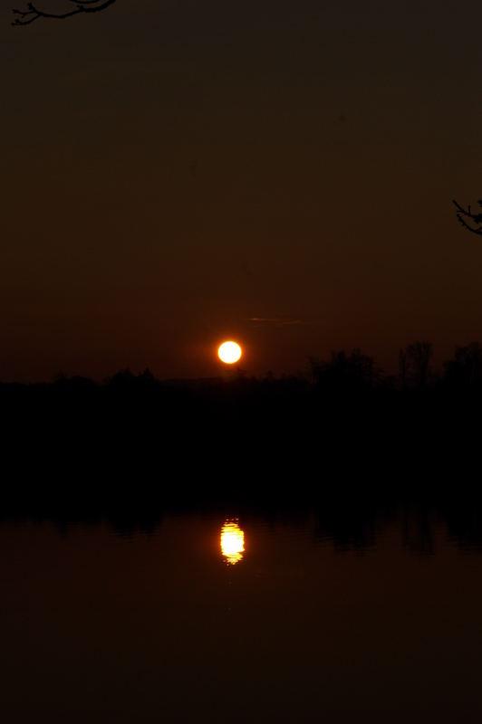 Sonne über und im Staffelsee II