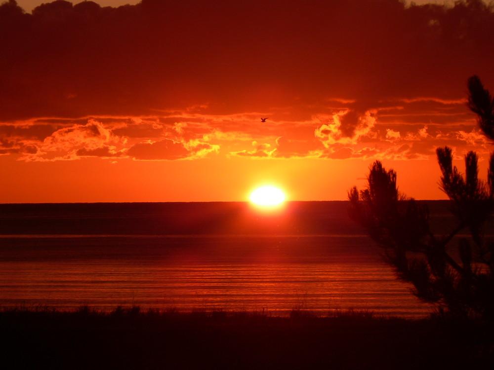 Sonne und das Meer