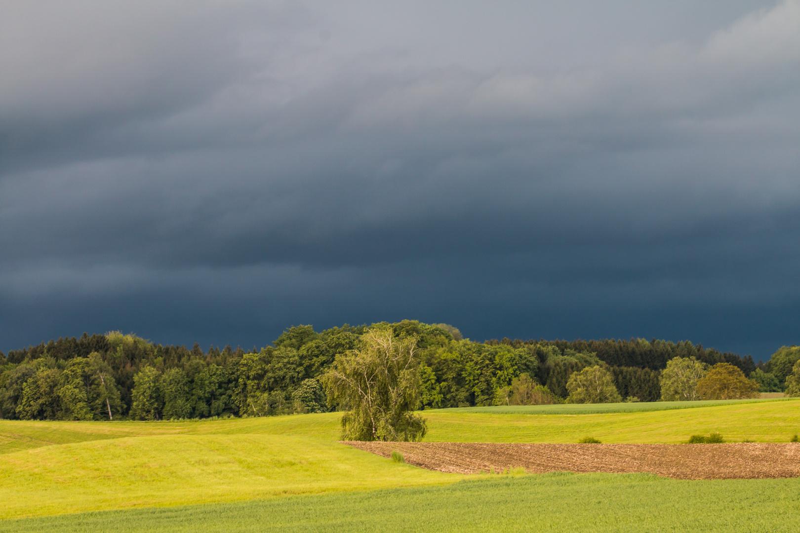 Sonne und Gewitter am Abend