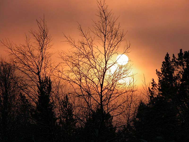 Sonne verschwindet im Nebel