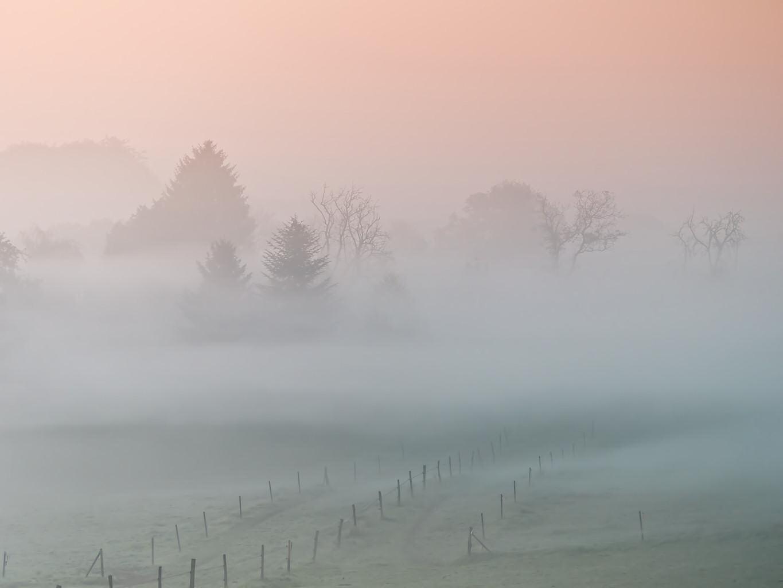 Sonne versus Nebelschwaden