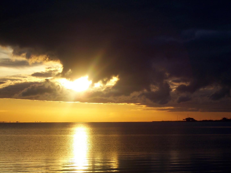 Sonne VIII