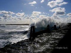 Sonne, Wind und Wellen