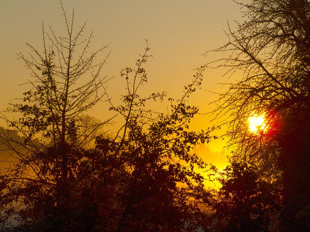 Sonneaufgang und Morgennebel