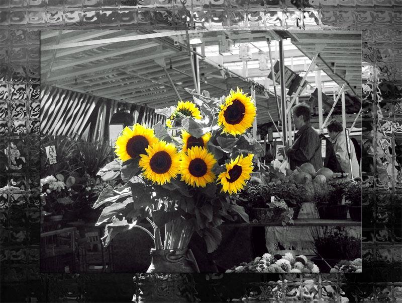 Sonneblumen auf dem Wochenmarkt