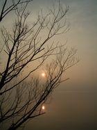 Sonnen
