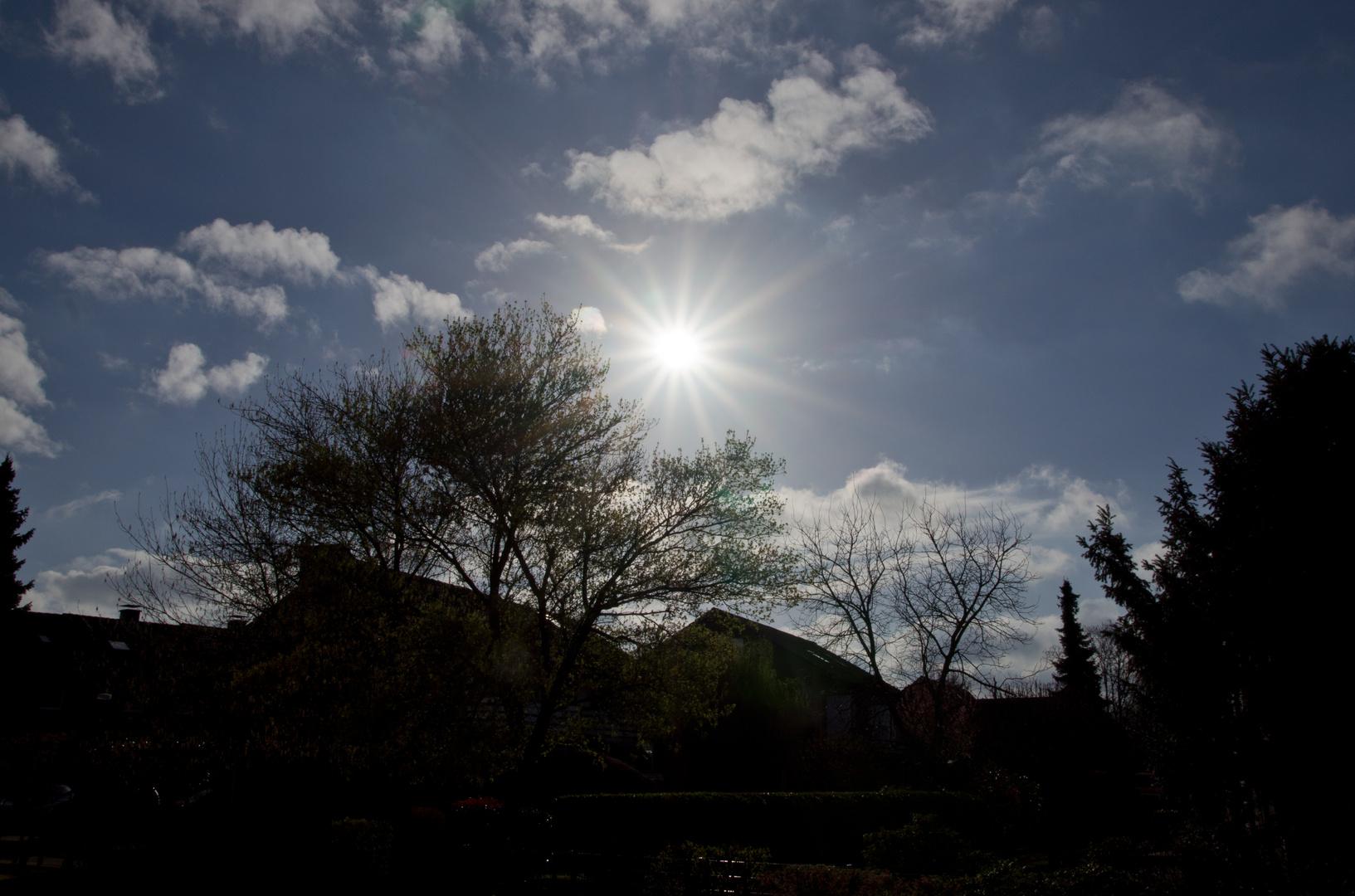 Sonnen - Sonntag