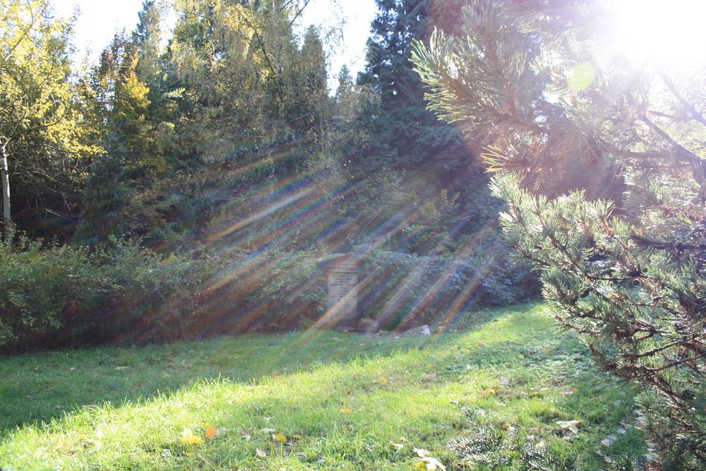 Sonnen-Spirits