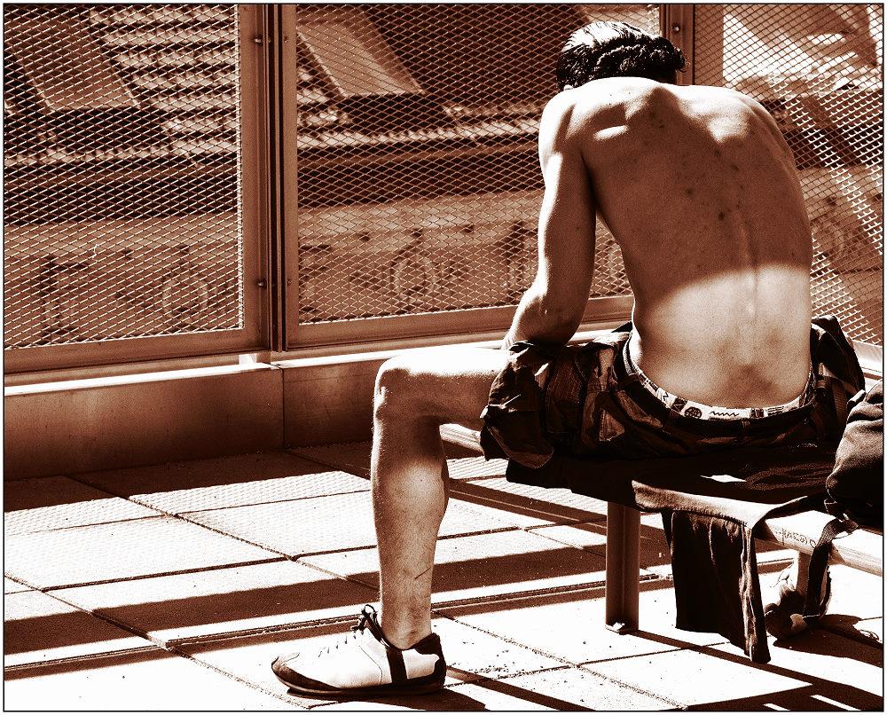 ... Sonnenanbeter hinter Gittern ....