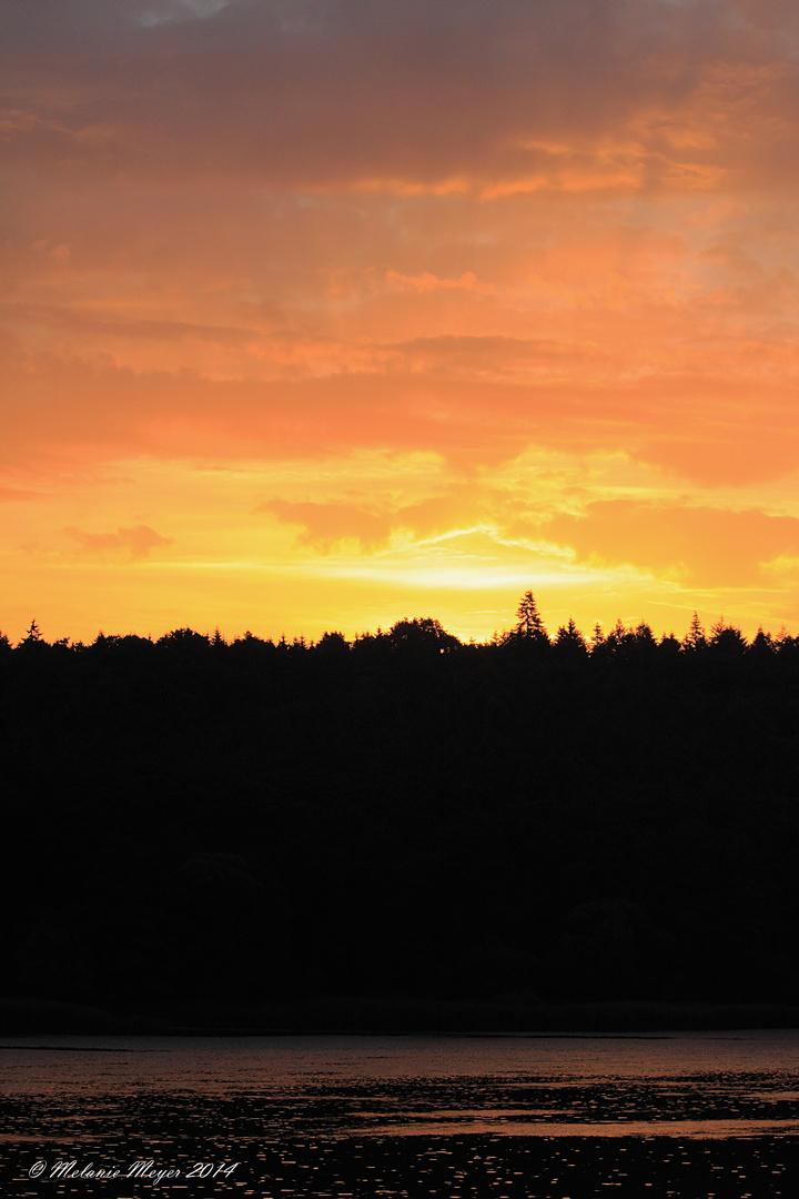 Sonnenaufgang 08.06.2014 (2)
